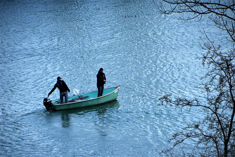 River Aar 17.03 (1)