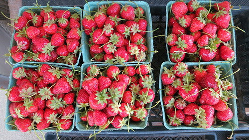 Strawberries at produce stand, St. Mary's County