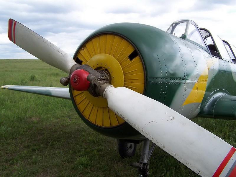 Yak-52 3