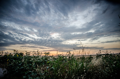 sunset nature field grass clouds texas awesome strangelydifferent