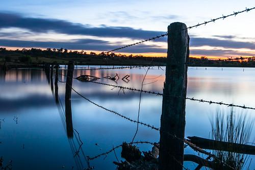 water sunrise australia hawkesbury logoon freemansreach bushellslagoon