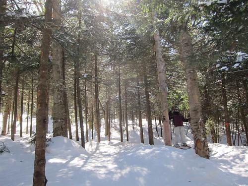 winter snow skiing sue okemo 2014 glades justsue march2014