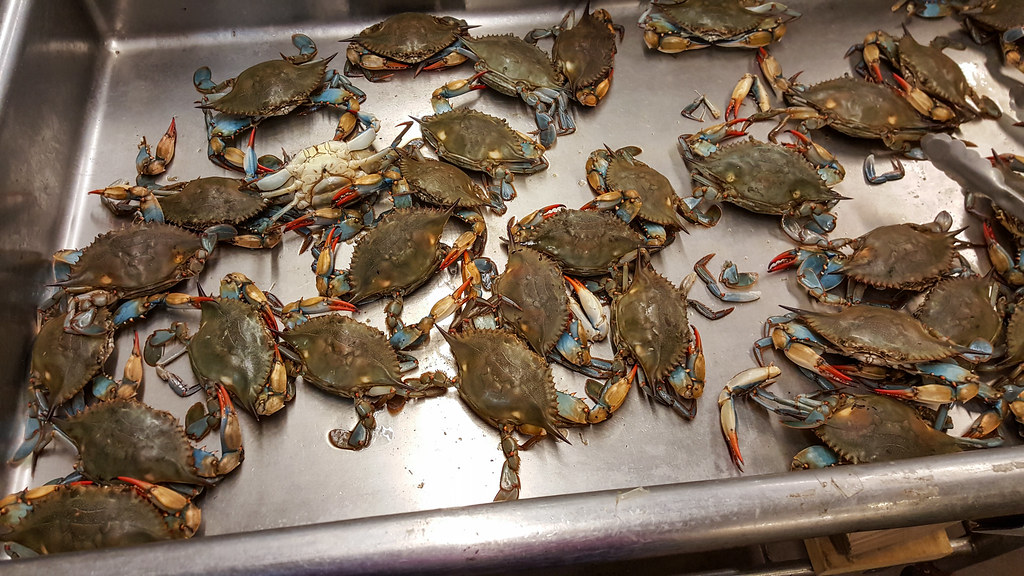 live blue crabs | Live blue crabs for sale at the Asian Mark