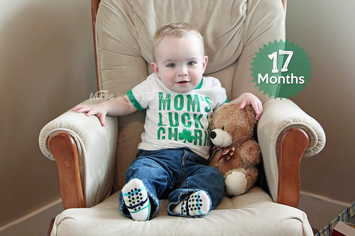 Ethan is 17 Months Old! | by NurseLovesFarmer