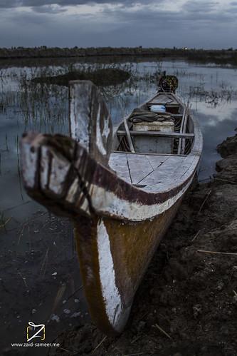 sunset boat dhiqar marshes chibaish nasiriyah boats marshland ride river wetland myride