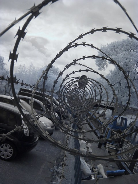 Barbed Wire Tunnel