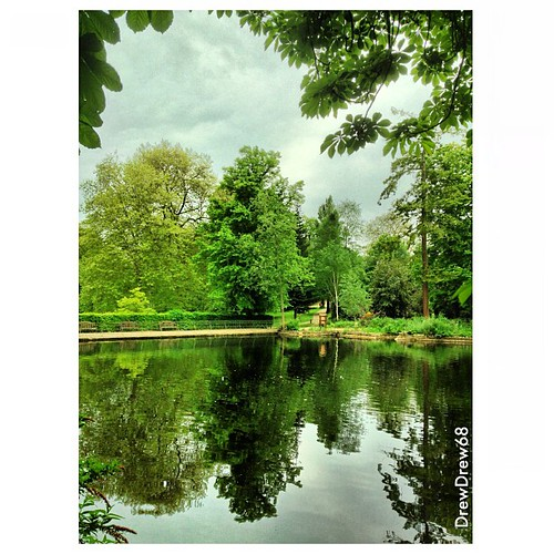 Reflections of greenery across water in Christchurch Park from a few days ago. #park #christchurchpark #ipswich #suffolk #greenery #reflections #water #pond #trees #clouds #foliage #green | by DrewDrew68