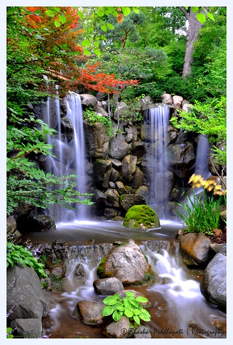 243/365: 08/31/2013. Waterfalls at the Anderson Japanese Gardens! | by peddhapati