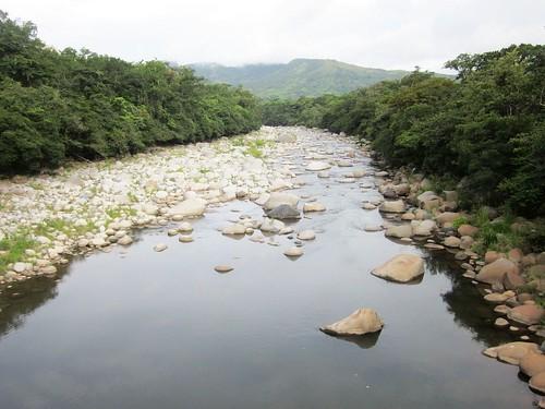 outdoor panama boquete lospozosdecaldera latinamerica jungle trees water