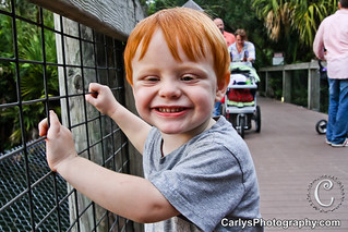 boo at the zoo (6 of 10).jpg | by Carly's Photography