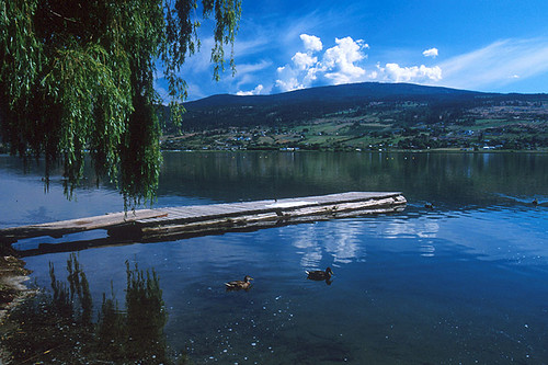 Swan Lake in Vernon, North Okanagan Valley, British Columbia, Canada