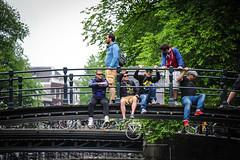 Amsterdam Frat Bros