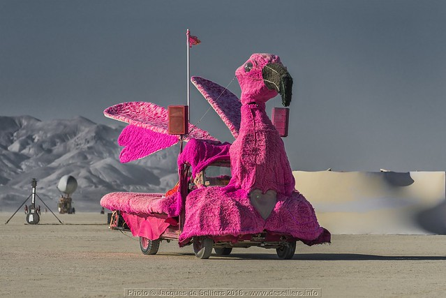 Pink Flamingo Mutant Vehicle