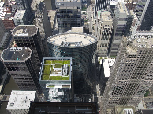 Looking Down at Hyatt Center and Franklin (AT&T) Center Directly North of Willis Tower Skydeck, Chicago, Illinois