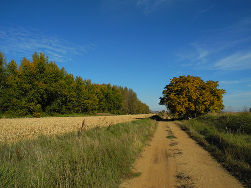 Camino Natural la Senda del Duero
