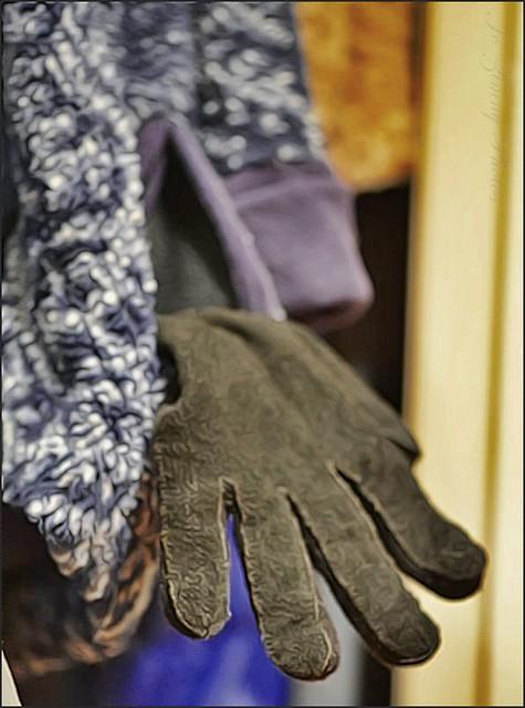 The Flickr Lounge-Gloves