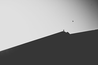 Can you fly? | by A. adnan