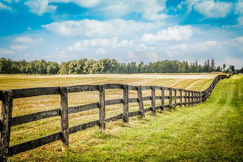cambridge ontario canada fence landscape wavy