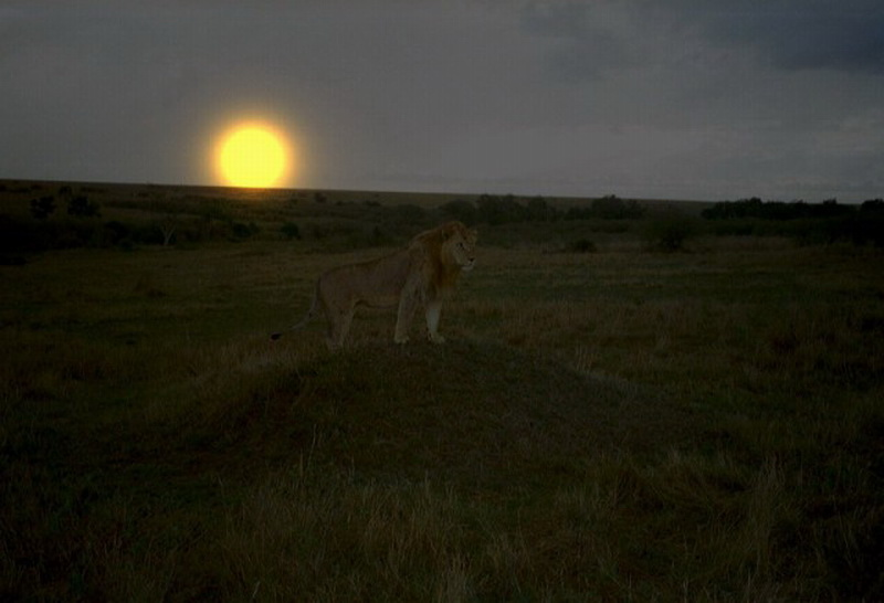 Kenia2002-07-25