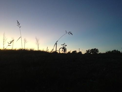 sunset bike bicycle bikes sunsetsilhouette