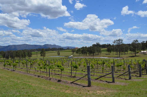 Hunter Valley Wineries by eGuide Travel | by eGuide Travel