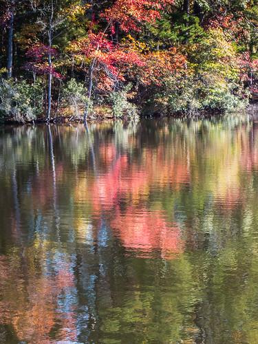 usa reflection fall water leaves ga georgia us seasons unitedstates vegetation northamerica waterscape stonemountainpark treeparts