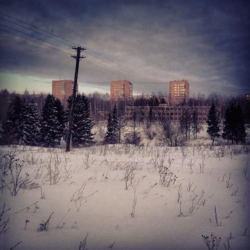 city winter forest square squareformat ижевск iphoneography instagramapp