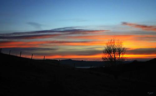 blue sunset sky orange sun sol nature beautiful silhouette norway clouds canon fence landscape eos norge outdoor himmel trondheim skyer solnedgang kjetil 500d visitnorway lundåsen ilobsterit