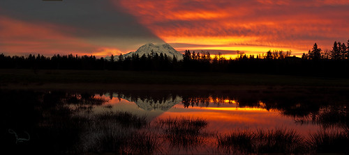 panorama sun mountains reflection nature water silhouette clouds rural sunrise canon landscape 50mm pond shadows atmosphere rainier washingtonstate mtrainier skyshadow niftyfifty t4i 1riverat matthewreichel