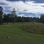 Alabama 2016 300