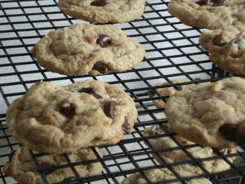 CookiesCoolingCloseup   by YoAmes