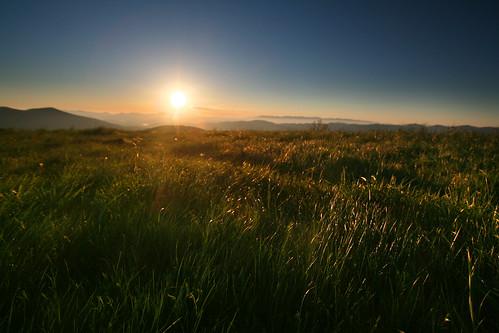 summer mountain mountains primavera sunrise spring tennessee northcarolina amanecer verano appalachian senderismo sendero blueridge montañas appalachiantrail maxpatch westernnorthcarolina salidadelsol apalaches