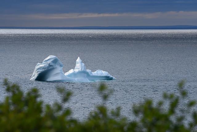 Iceberg Off The Labrador Coast