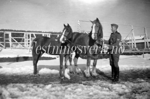 Sarpsborg 1940-1945 (306)