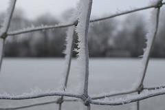 winter-2017-13