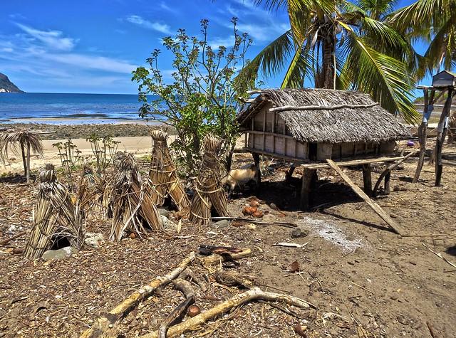 Madagascar8 - 060.jpg