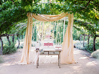 Cake Pop Display Under the Arbor | by Sweet Lauren Cakes
