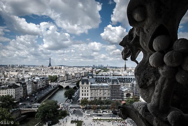 Notre Dame. Paris. Vision Chimérique.