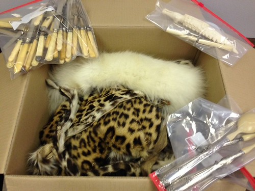 Leopard and Ivory Seized from Commercial Air Cargo Shipment in New Orleans | by USFWS Headquarters