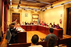 Una votación realizada en la sesión correspondiente al mes de mayo de 2013