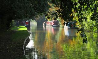 Narrow Boats | by Andrew Gustar