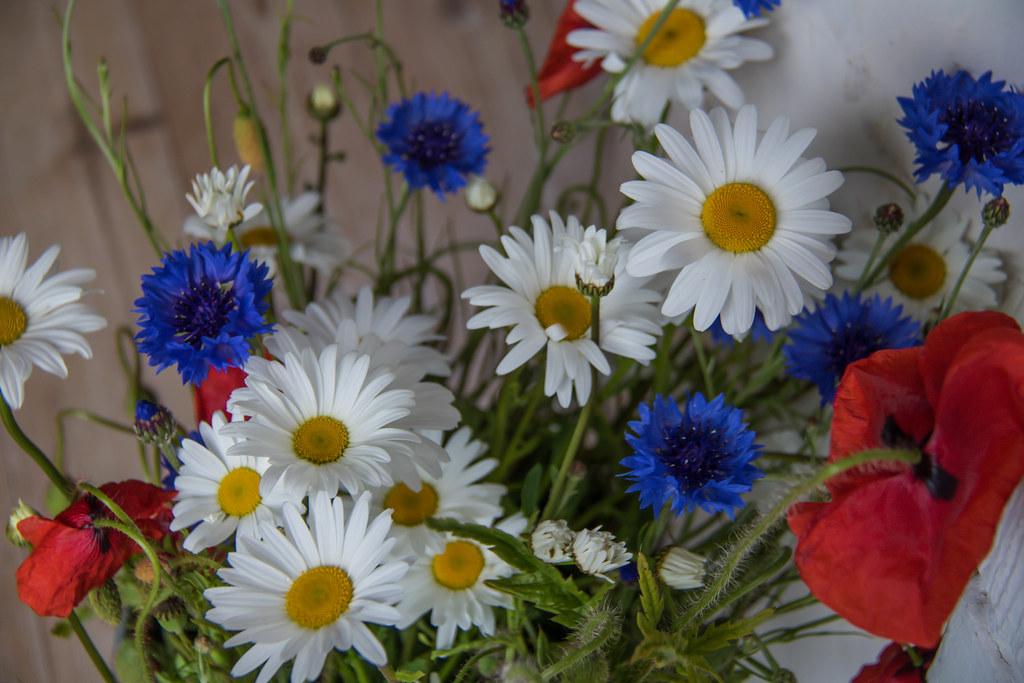 Midsummer Flowers Susanne Nilsson Flickr