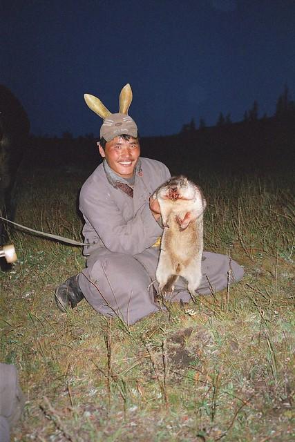 chasseurs de marmottes mongols, woodchuk hunters