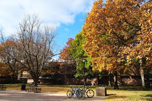 Autumn in Wichita
