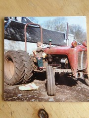 Stu and tractor, Quinish