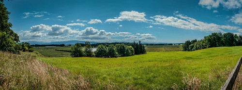 canada bc farmland explored nikon18200mmvrii aldergove topazadjust nikond7000 aldergrovelakeregionalpark pse11 adobelightroom4