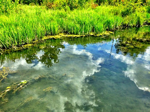 Reflections #dufferinislands | by johncpiercy