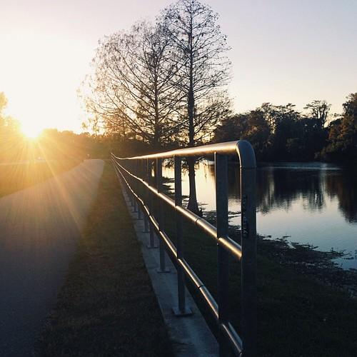 light sunset reflection nature silhouette river square orlando shadows florida path fav20 squareformat fav10 jayblanchardpark iphoneography instagramapp vscocam