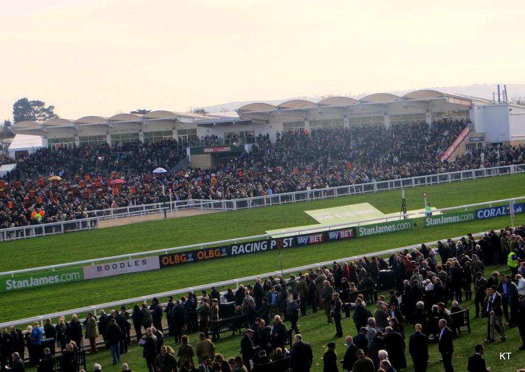 Cheltenham Festival 2020 odds, sportsbooks, weird bets, betting odds, betting predictions, betting tips, online gambling sites in the uk, gamingzion, bet365, Uk horse racing, horse racing