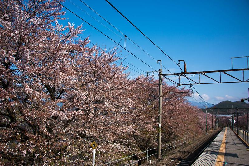 20150412-甲州高尾山-0015.jpg